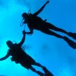 Mergulho nas águas de Florianópolis