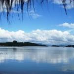 Passeando pelo Ribeirão da Ilha
