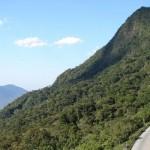 Roteiro rural: Estrada Dona Francisca