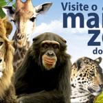 Dica para o feriado: Zoo Pomerode