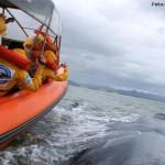 As baleias estão chegando para animar as férias de julho