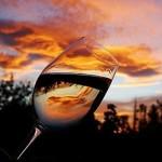 Roteiro do vinho – Pinheiro Preto e Tangará