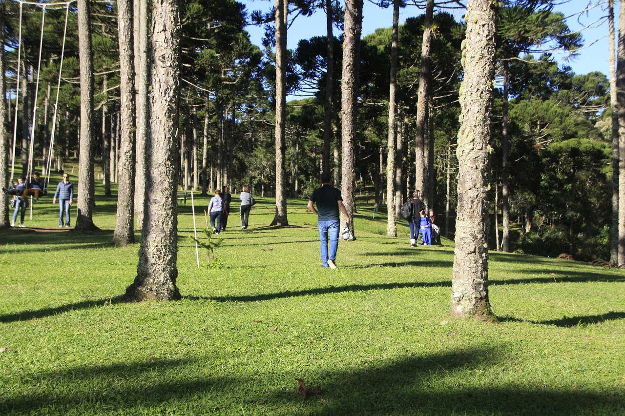 Game of Thrones nos Parques Ambientais de Santa Catarina?
